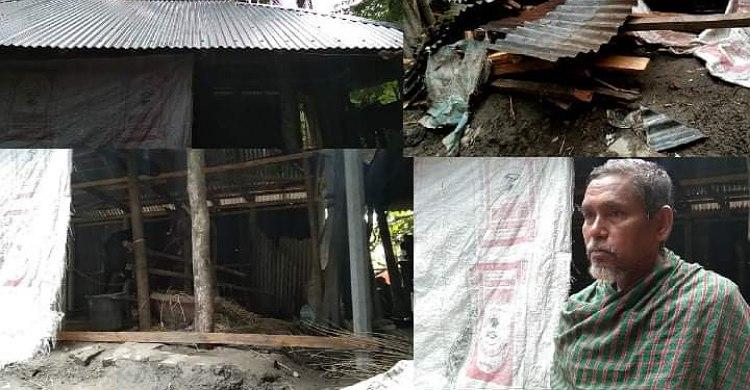 রায়পুরে মুক্তিযোদ্ধার জমি দখল করে ঘর নির্মাণ
